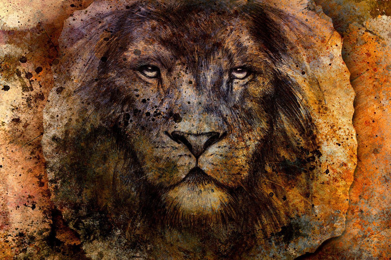 Fototapete Portrait eines Löwen