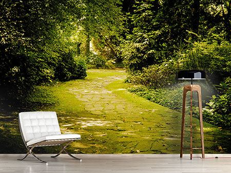 Photo Wallpaper Moss-Covered Path