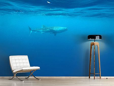 Photo Wallpaper The Whale Shark