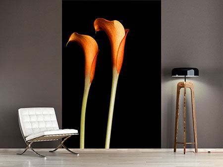 Photo Wallpaper Charming Calla