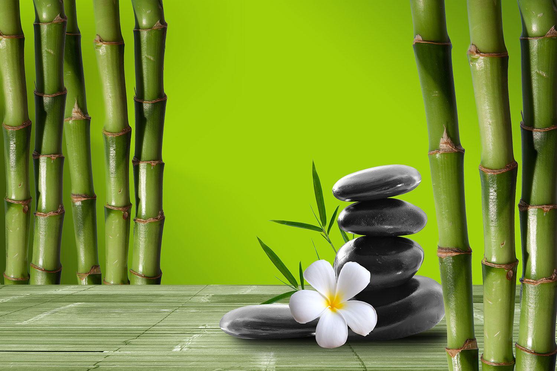Fototapete Der Bambus