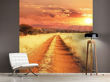 Photo Wallpaper Dusk In Kenya