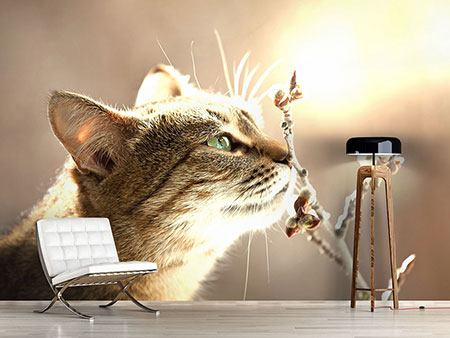 Photo Wallpaper The Cat