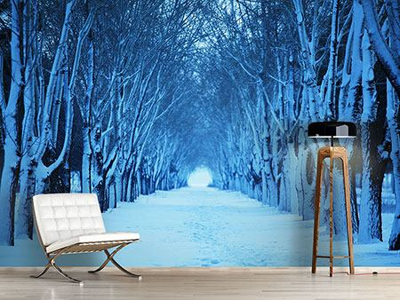 Photo Wallpaper Winter Trees