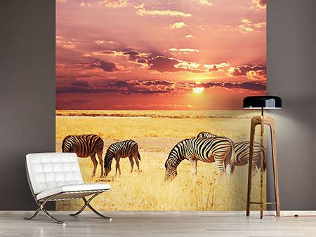 Photo Wallpaper Zebras In The Savannah
