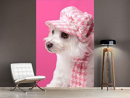 Photo Wallpaper Pretty Dog In Pink