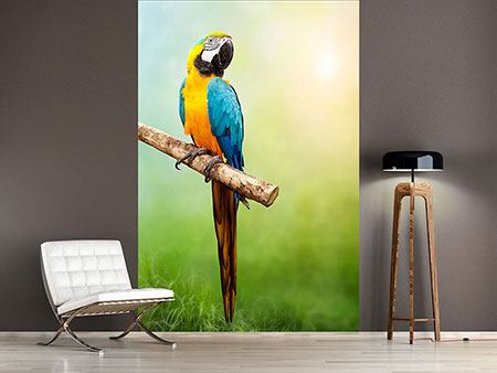 Photo Wallpaper The Parrot