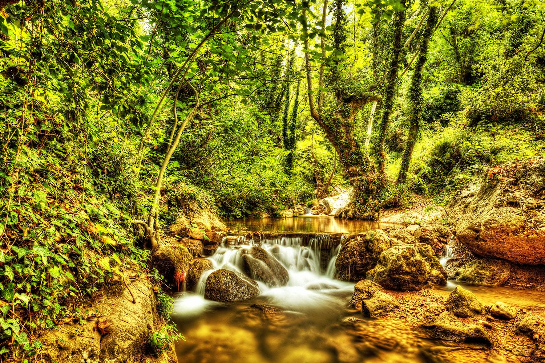 Fototapete Wasserfall im Wald