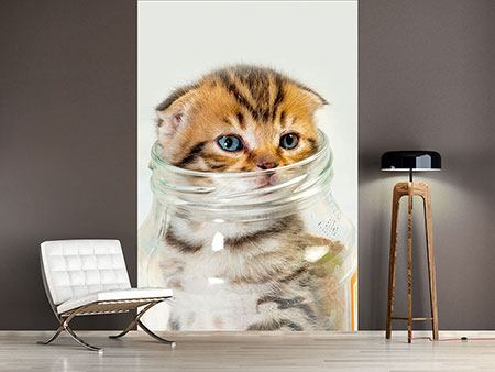 Photo Wallpaper Folded Ears Kitten