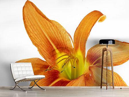 Photo Wallpaper The Tiger Lily