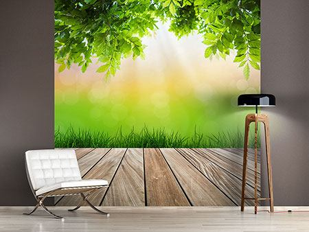 Photo Wallpaper Patio