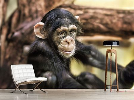 Photo Wallpaper The Chimpanzee