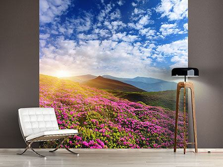Photo Wallpaper Flowery Mountain Landscape