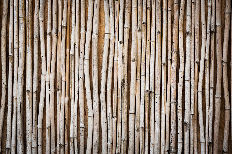 Fototapete Getrocknete Bambusrohre