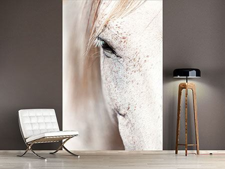 Photo Wallpaper Whole Blood White Horses