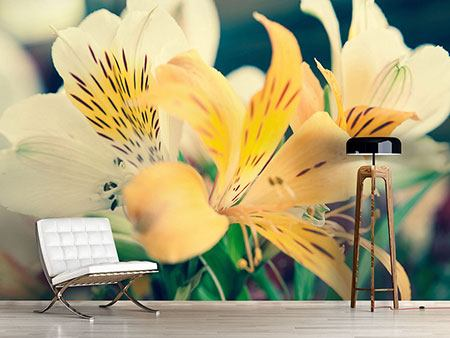 Photo Wallpaper Tiger Lily
