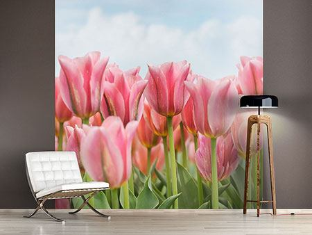 Photo Wallpaper Delicate Tulips
