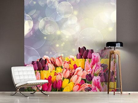 Photo Wallpaper Colorful Tulip Bed In The Play Of Light