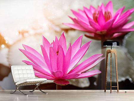Photo Wallpaper Lotus Duo