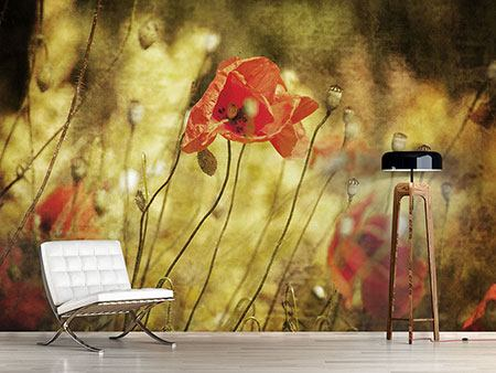 Photo Wallpaper The Wild Poppies