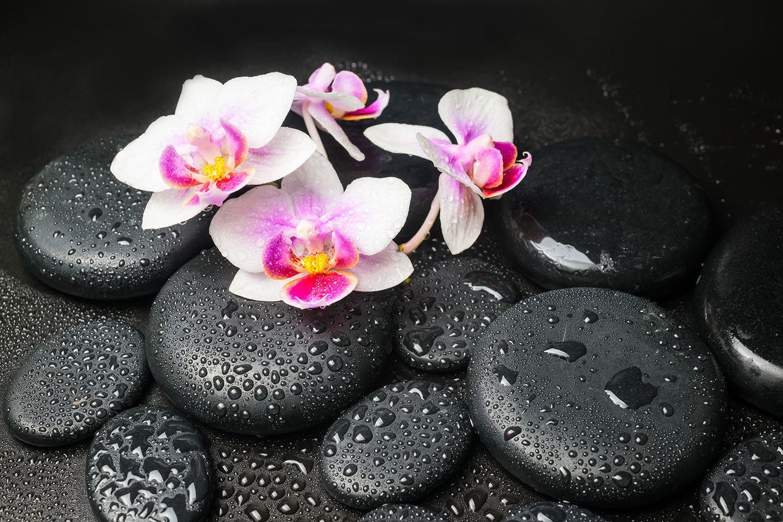 Fototapete Feng-Shui-Orchidee Zen