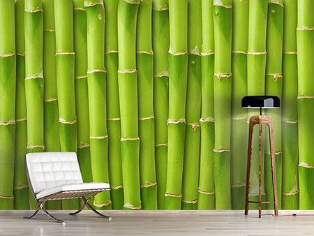 Photo Wallpaper Bamboo Wall